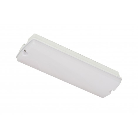 Robus Portiekverlichting Led 6W Opaal Kap R6Bhled Ip65 365X118X88Mm 350Lm