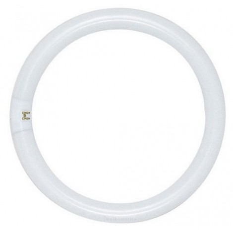 Philips Circlinebuis TLE TL5C 22W 830 3000K Rond 2Gx13 Warmwit