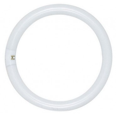 Philips Circlinebuis TLE TL5C 40W 840 4000K Rond 2Gx13 Koelwit