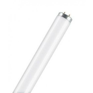 Philips Fluorbuis TLD TL12 40W 05-10 Vliegenlamp Blacklight Bl350 1200Mm