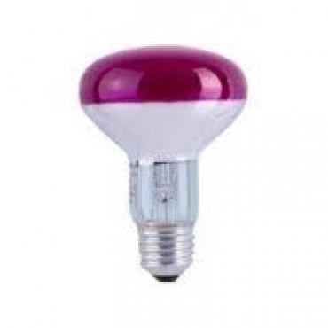 Osram Gloeilamp Reflector Spc 60W E27 40Gr R80 Violet Discolamp