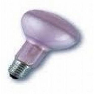 Floradym Plantenlamp Reflector 60W E27 R80 Grolux