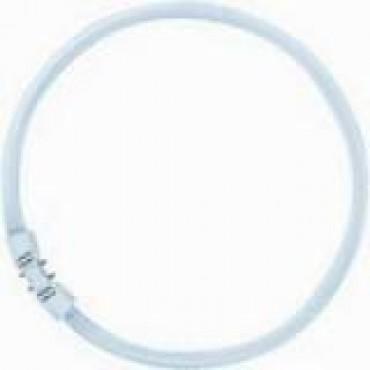 Osram Circlinebuis Lumilux TLE TL5C  Fc 55W 827 2700K  Rond 2GX13 diameter 305mm