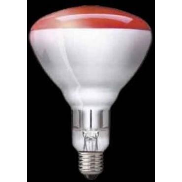 Philips Warmtelamp Reflector Infrarood 250W E27 Rood R125 Ir250C Spc