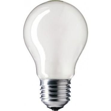 Gloeilamp Standaardlamp Laagspanning 48V 100W E27 Helder 60Mm